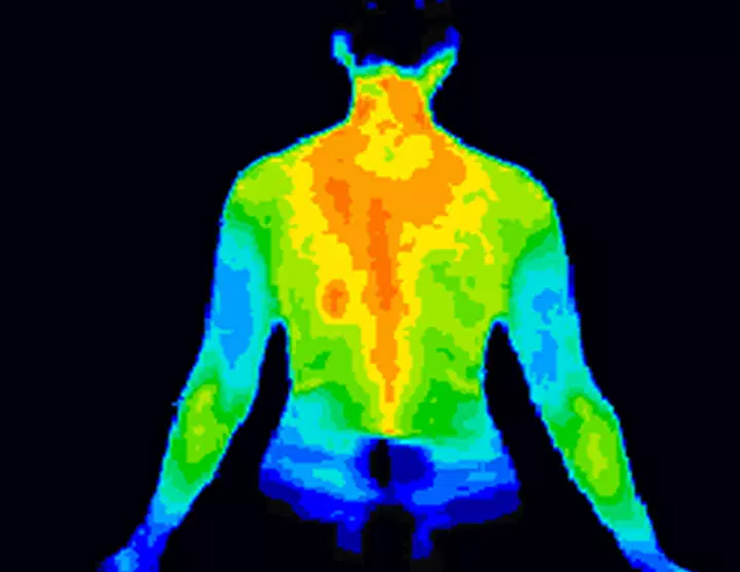 thermal image of persons back